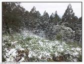 五分山步道雪景:五分山雪景 (49).jpg