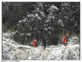 五分山步道雪景:五分山雪景 (19).jpg