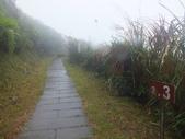 雨霧五分山:五分山稜線步道 (43).JPG
