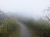 雨霧五分山:五分山稜線步道 (47).JPG