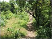 鄉林農場步道:鄉林農場 (8).jpg