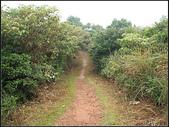 羊稠坑森林步道:羊稠坑步道 (14).jpg