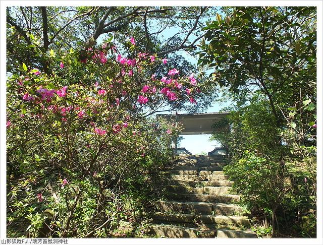 猴洞神社 (35).JPG - 猴洞神社鐘萼木