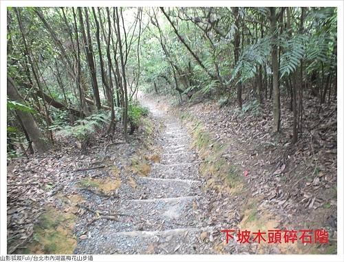 梅花山步道 (21).JPG - 梅花山步道