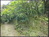 小粗坑聚落、古道 :小粗坑 (8).jpg