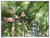 內洞森林遊樂區:內洞森林遊樂區 (36).jpg