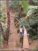 深澳坑水管路、深澳山 :深澳山 (10).jpg