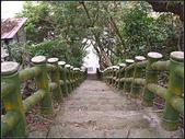 象山自然步道、奉天宮步道:象山步道 (29).jpg