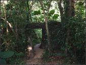 福州山森林步道:福州山 (12).jpg