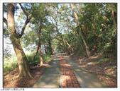 觀音山步道:觀音山步道 (4).jpg