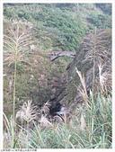 山尖路水圳橋:山尖路水圳橋 (8).JPG
