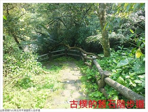野人谷步道 (3).JPG - 野人谷步道