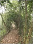 墨硯山步道:墨硯山 (12).jpg