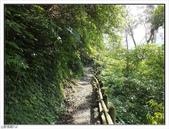 棲蘭森林遊樂區:棲蘭森林遊樂區 (43).jpg