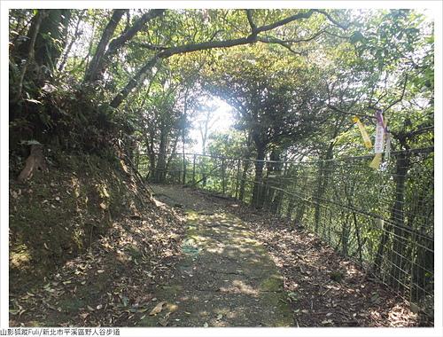 野人谷步道 (60).JPG - 野人谷步道