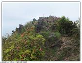 巨齒稜紅星杜鵑花:巨齒稜紅星杜鵑 (21).jpg