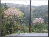 虎豹潭溪畔步道:溪畔步道 (2).jpg