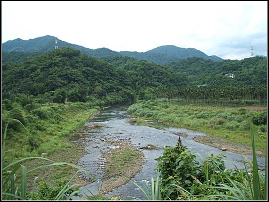 軟橋親水、田園步道:軟橋親水 (15).jpg