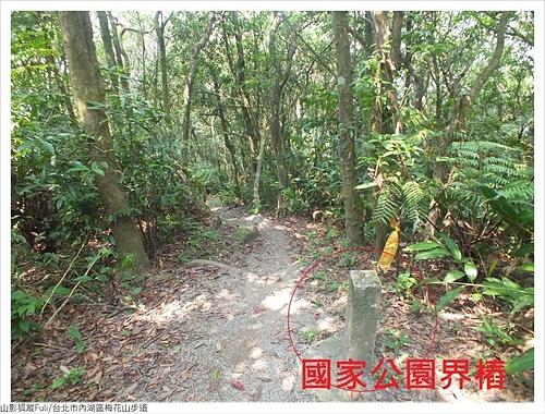 梅花山步道 (17).JPG - 梅花山步道