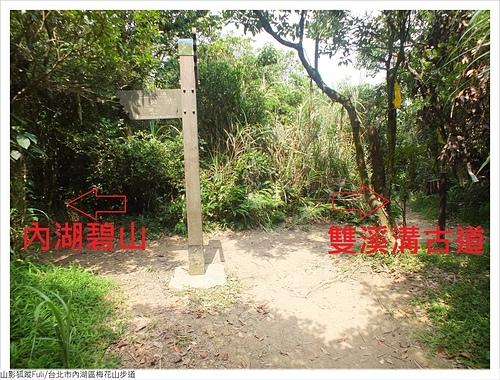 梅花山步道 (6).JPG - 梅花山步道