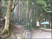 加里山登山步道:加里山 (2).jpg
