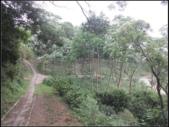 鹿廚坑步道(內環線) :鹿廚坑步道 (2).png