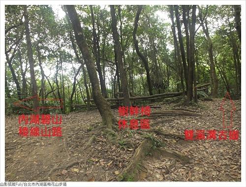 梅花山步道 (23).JPG - 梅花山步道