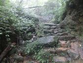 雨霧五分山:五分山稜線步道 (19).JPG