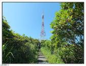 野柳地質公園野百合:野柳地質公園野百合 (11).jpg