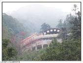 仙山靈洞宮步道:仙山靈洞宮步道 (5).jpg