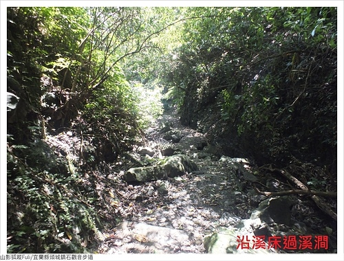 石觀音步道 (31).JPG - 石觀音步道