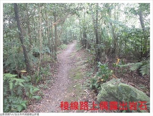 碧山步道 (5).JPG - 碧山步道