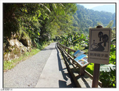 內洞森林遊樂區:內洞森林遊樂區 (7).jpg