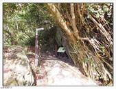 大羅蘭溪步道:大羅蘭溪步道 (14).jpg