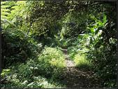 白雞山步道:白雞山 (12).jpg