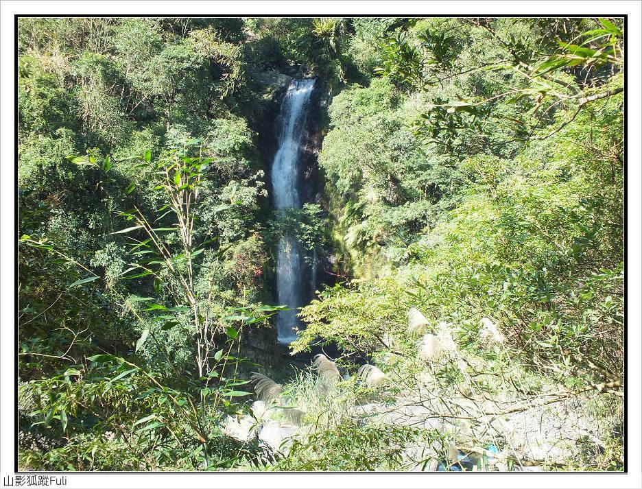 內洞森林遊樂區:內洞森林遊樂區 (5).jpg