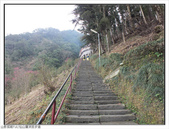 仙山靈洞宮步道:仙山靈洞宮步道 (18).jpg