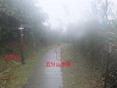 雨霧五分山:五分山稜線步道 (45).JPG