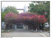 屏東市中山公園:中山公園 (4).jpg