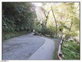 內洞森林遊樂區:內洞森林遊樂區 (13).jpg