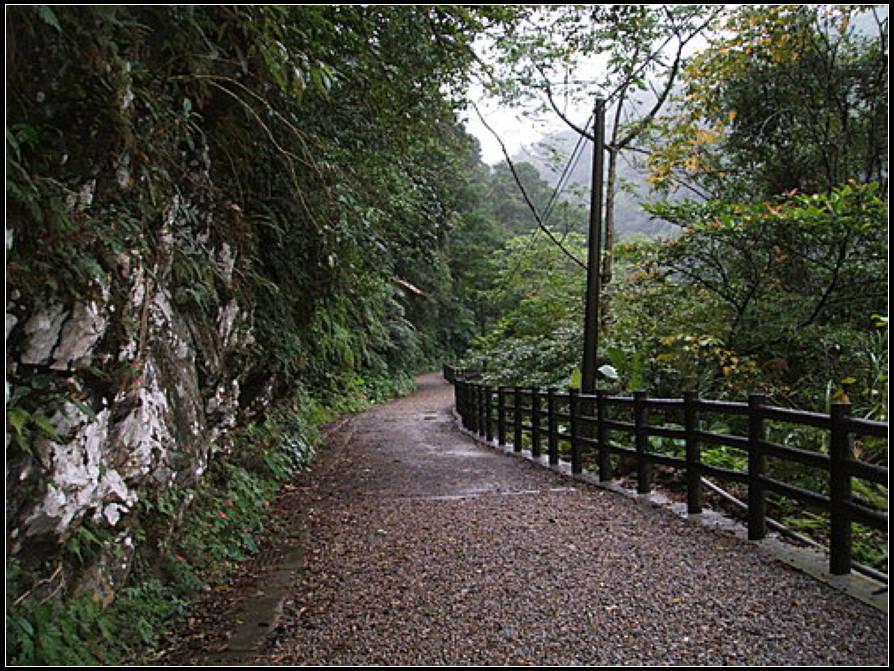 信賢步道、吊橋 :信賢步道 (2).jpg