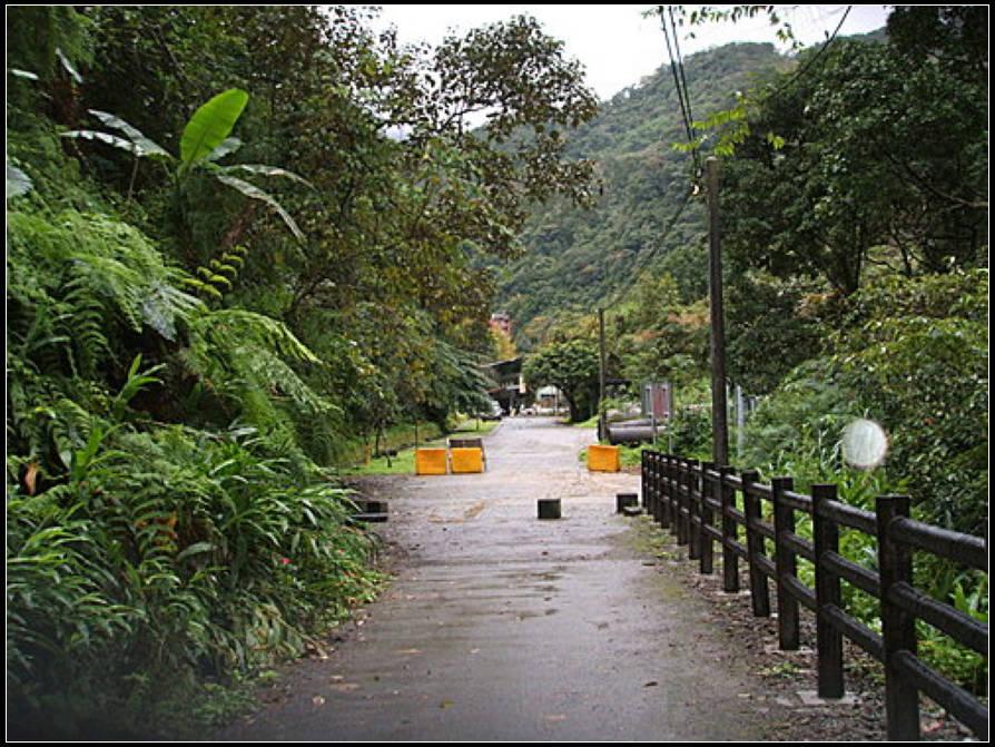 信賢步道、吊橋 :信賢步道 (10).jpg