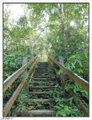 五指山登山步道:五指山登山步道 (18).jpg