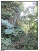 五指山登山步道:五指山登山步道 (12).jpg