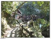 內洞森林遊樂區:內洞森林遊樂區 (38).jpg