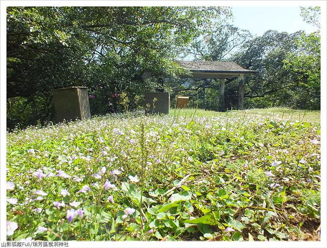 猴洞神社 (17).JPG - 猴洞神社鐘萼木