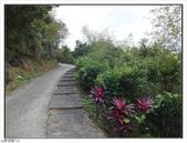 觀海步道:觀海步道 (3).jpg