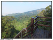 中央嶺森林步道:中央嶺森林步道 (13).jpg