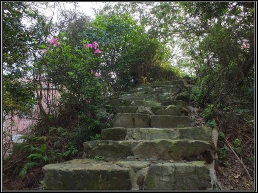 猴硐神社:猴硐神社 (2).jpg