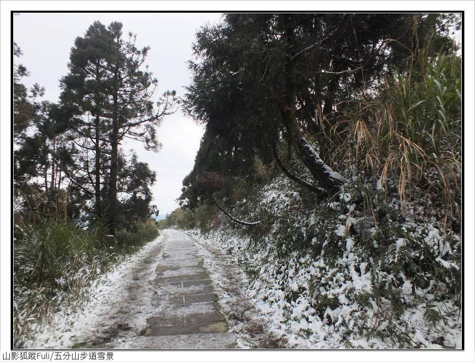 五分山步道雪景:五分山雪景 (47).jpg